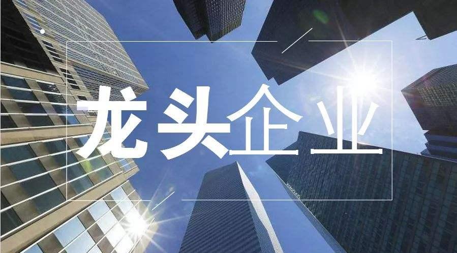 细分行业龙头股票.jpg